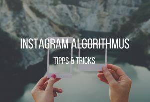 Der Instagram Algorithmus 7 Tipps Wie Deine Posts
