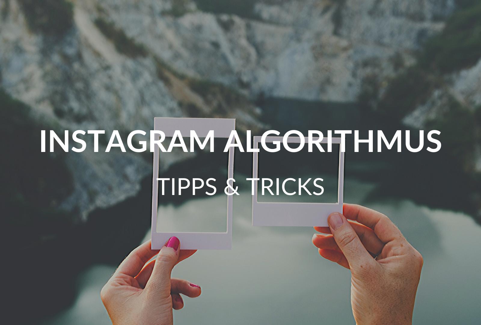 """Der Instagram-Algorithmus: 7 Tipps, wie deine Posts """"sichtbar"""" werden"""