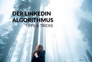 Der LinkedIn Algorithmus - Tipps & Tricks Titelbild